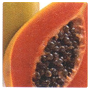 LCN SPA Hydro & Balance Active Ingredient: Papaya Fruit Extract
